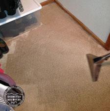 <b>Carpet Cleaning</b>